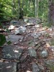 Rocks, rocks, rocks!