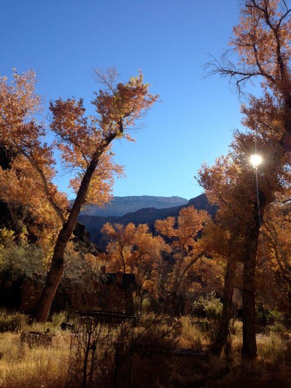 Phantom Ranch. Beautiful!